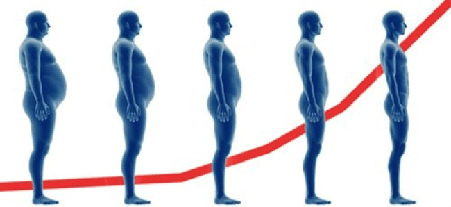 body-composition-testosterone