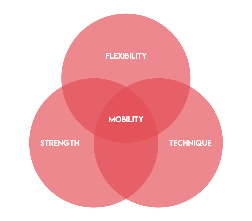 Hockey Mobility Venn Diagram